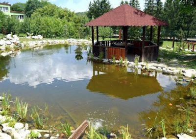 pond in the schoolyard